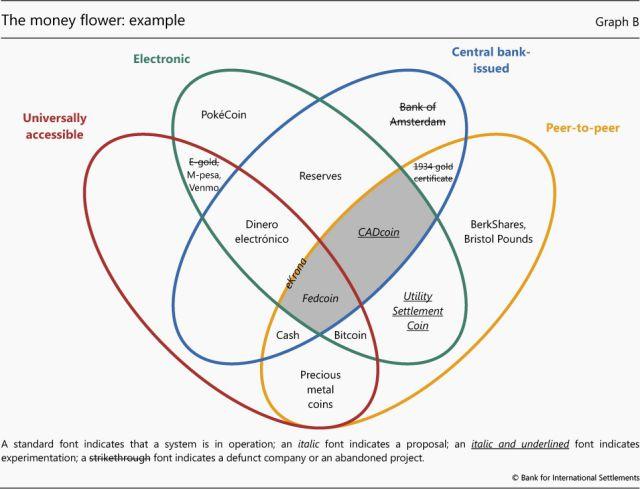 moneyflower