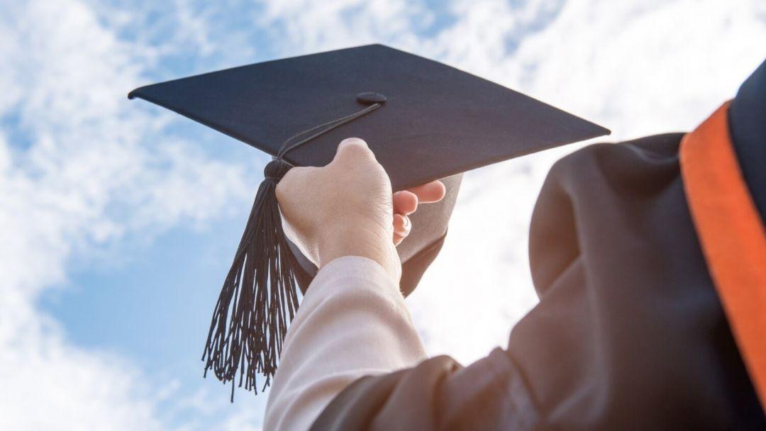 Образование университет выпускник