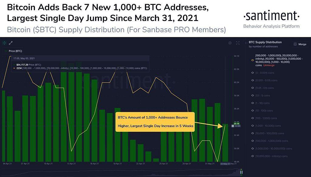 Bitcoin-BTC-Whale-Addresses