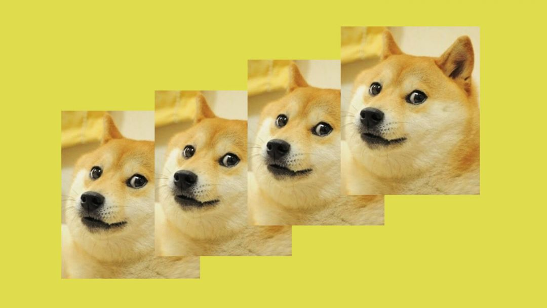 Doge мем собака Dogecoin