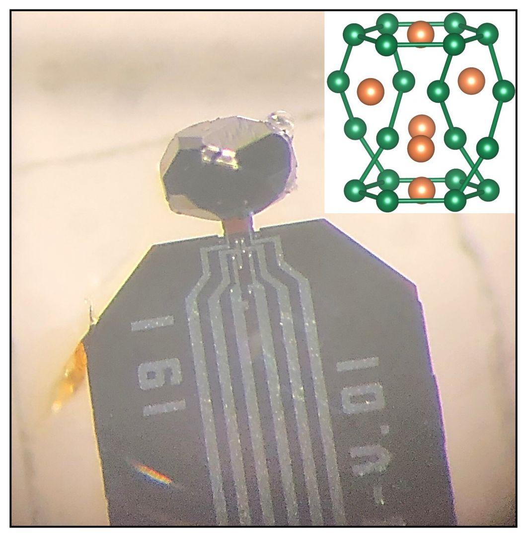 образец нового сверхпроводника